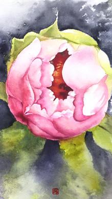 花朝月夕 No.1 Blossom No.1