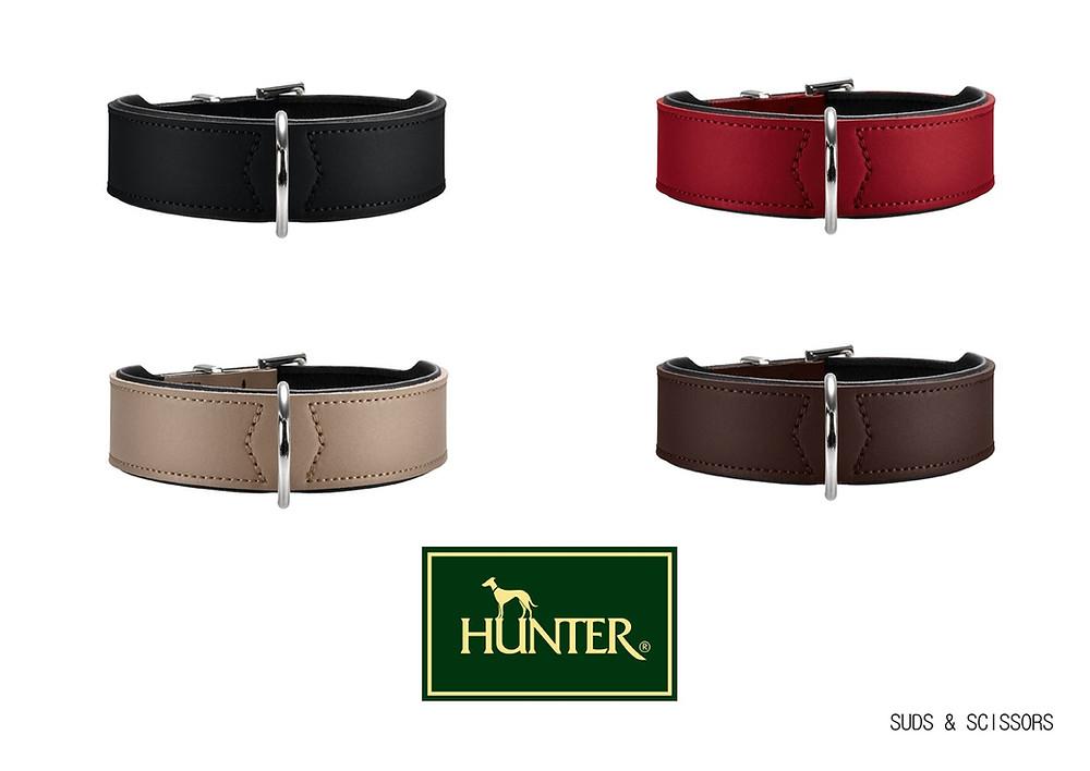 Hunter Basic Collar.jpg