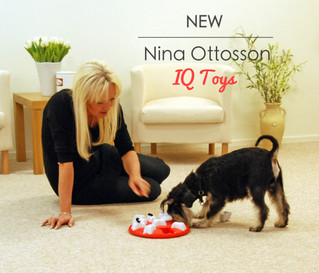 NEW: Nina Ottosson IQ Toys