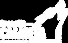 Logo CALMETA blanc.png
