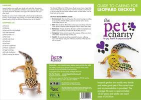 Leopard Geckos.jpg