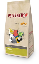 Bristol Pet & Bird shop Psittacus bird feed
