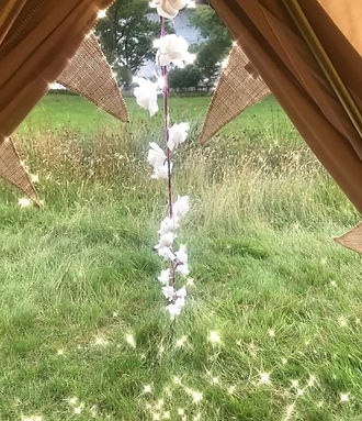 Lily Bell's Glamping Experience 🌸🎪🌸 #
