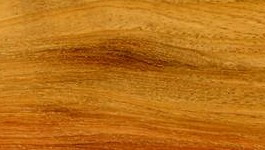 Your Guide to New Guinea Rosewood