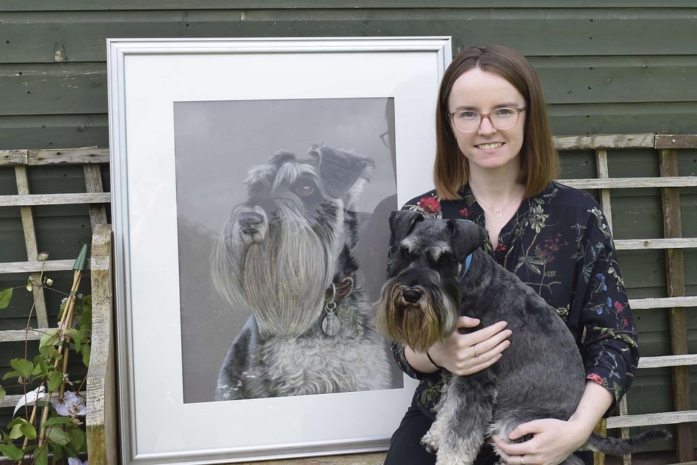 dog portraits - schnauzer portrait
