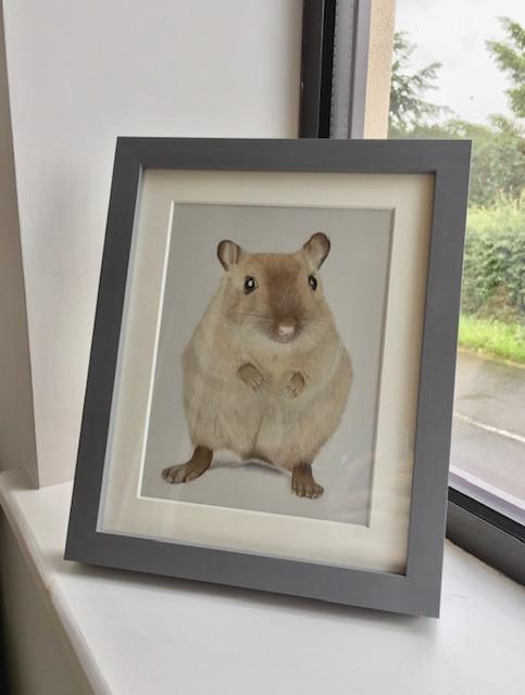 A framed pet portrait of a gerbil