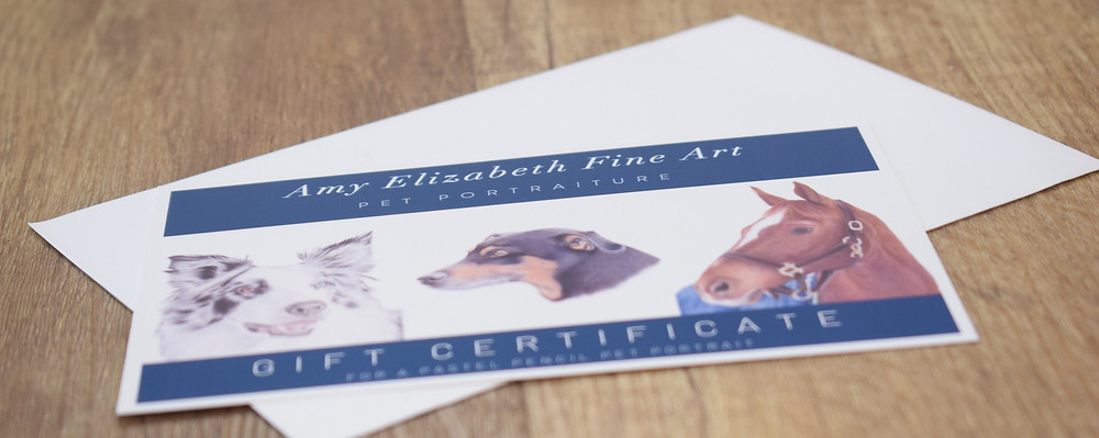 A pet portrait gift voucher- from Amy Elizabeth fine Art. Pet Portrait Artist