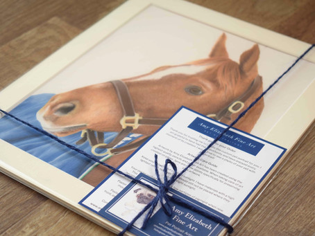 Horse Pastel Portraits UK-Drawing a Horse using Pastel Pencils.