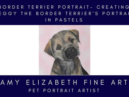 Border Terrier Portrait- Creating Peggy the Border Terrier's Portrait in Pastels
