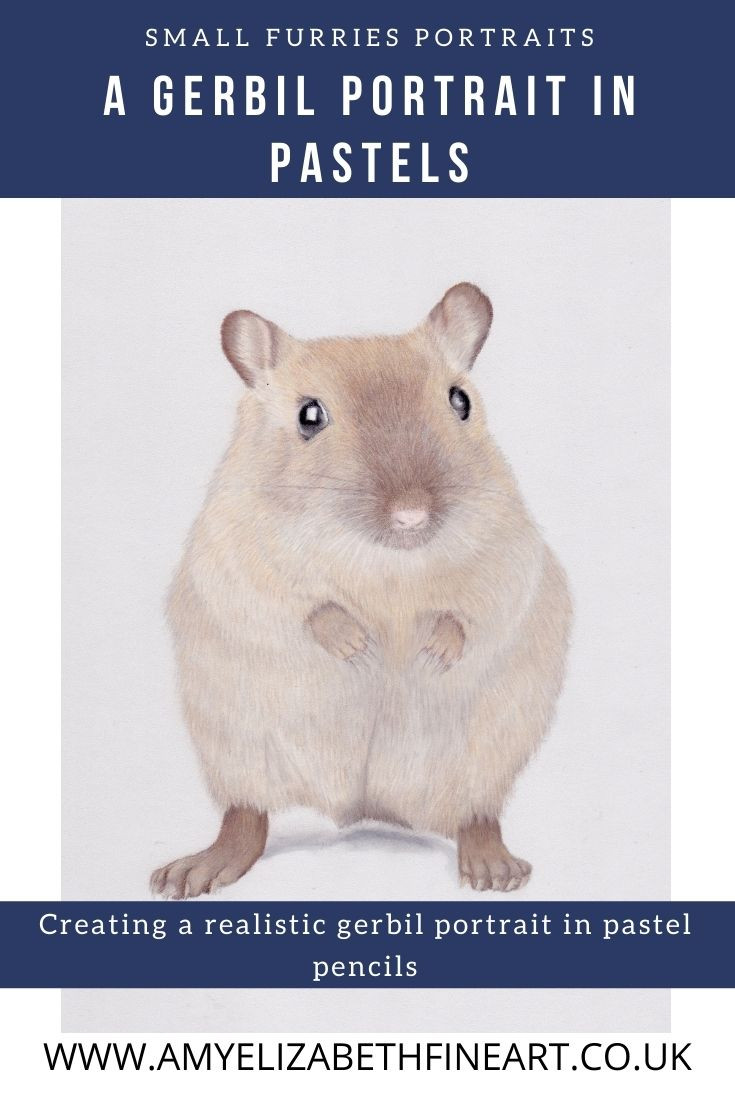 A realistic gerbil portrait drawing in pastel