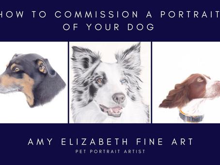 Pet Portrait Artist UK- How to Commission a Portrait of Your Dog