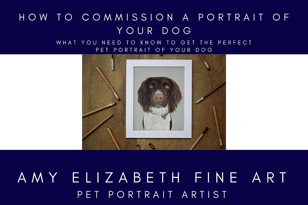 Dog Portrait Artists UK- How to commission a portrait of your dog