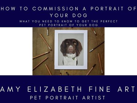 Dog Portrait Artists UK- How to commission a dog portrait of your pet.