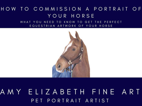 Horse Portrait Artists- How to Commission a Portrait of Your Horse