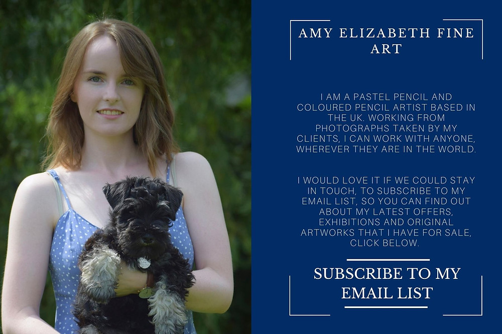 Photo of pet portrait artist, Amy Elizabeth Fine Art | Pet portrait Artist | Derbyshire