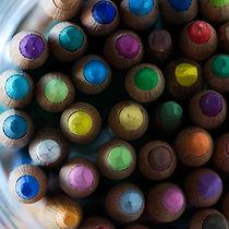 Pet portraits in pastel- pencils