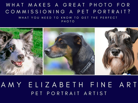 Pet Portraits from Photos-What Makes a Great Photo Reference for a Pet Portrait Commission?