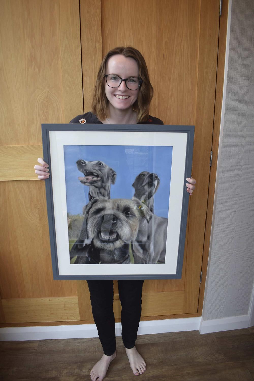 dog portraits - 3 dog portrait
