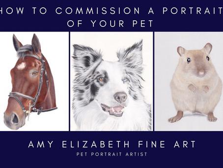 How to Commission a Pet Portrait