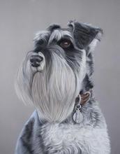 Monty dog pastel portrait miniature schn