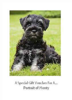 Pet Portrait Artist Gift Vouchers- Pet portrait gift voucher card gift- Image of a pet portrait voucher gift card