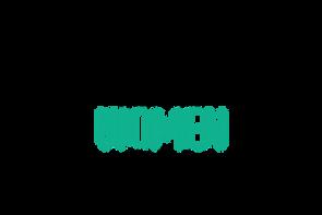 VIWIFF 2020 Laurel-screenplay competitio
