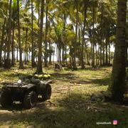 4 Playas imperdibles en Ecuador