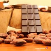 ¿Sabías que el cacao podría ser originario de Ecuador?