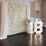 Silk Flower Wall Photo Backdrop Rental_Big Light Up Marquee Letters_Balloon Decorations_Ch