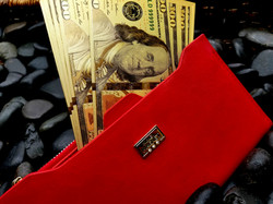 9 Money Magnet Feng Shui Wallet - Law of Attraction - goodluckgift.us - wealth - silver plate - good