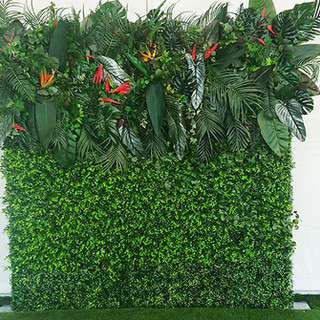 Flower Wall Backdrops for rent hedge wal
