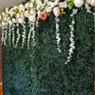 hedge flower wall backdrop for rent wedd