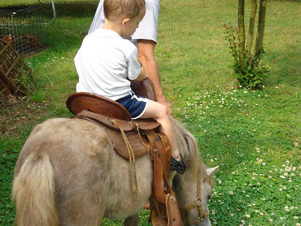 cricket's pony rides