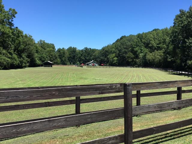 Farm Birthday Party Locations Georgia Atlanta
