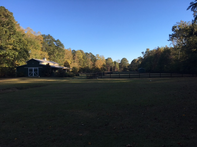 Horse Farm.3