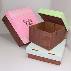 Impressão Flexografica de Alta Definição para Fabricação de Caixa de Papelão Ondulado