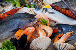Km 0 Local Fresh Seafood