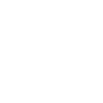 wng-logo.png