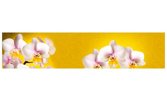 Кухонный фартук-037 Нежные орхидеи