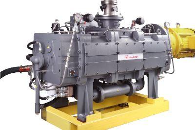 bomba vacío seca industrial