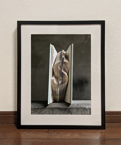 Dollar | Framed Print