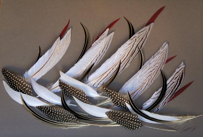 Tableau plumes - Régate