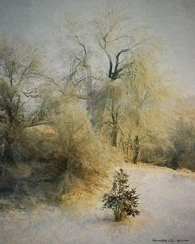 Blissful Winter II