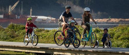 Non-electric bike bond