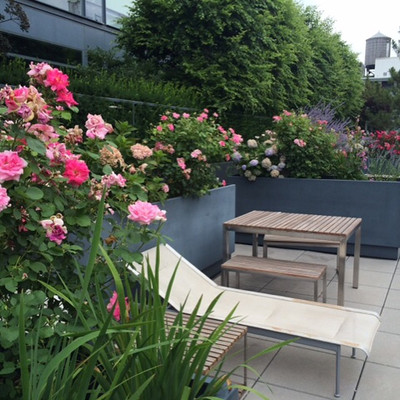 SOHO Roof Deck Garden
