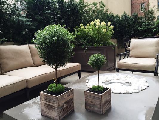 Private Manhattan Terrace