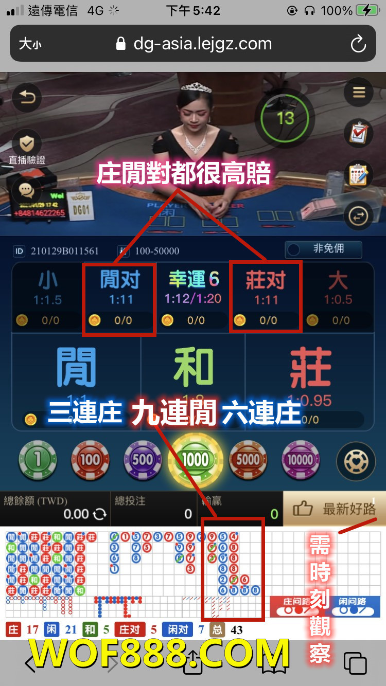 dg百家樂app