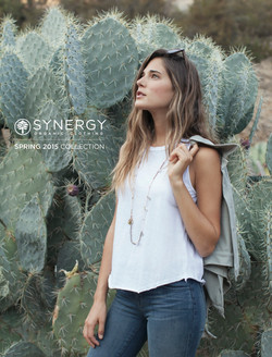 synergy cactus cover.jpg