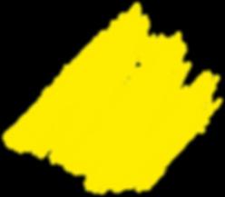 arc-brush-yellow-original_edited.png