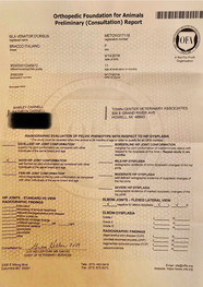 ISLA PRELIM HEALTH TESTS.jpg